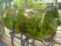 Plexiglas Aquarium Nach Maß : aquarium nach mass ~ Watch28wear.com Haus und Dekorationen